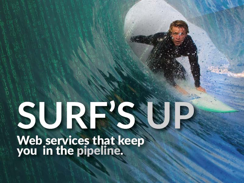 CATMEDIA Web Services Surf's up